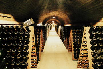 Small-Group Wine Day Trip from Paris...