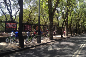 Mexico City Bike and Cultural Tour Including Gover