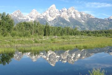 Grand Teton National Park Morning Tour