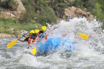 Browns Canyon Half Day Rafting