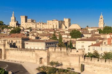 Excursão privada: Passeio de meio dia a Avignon, saindo de Marselha