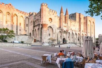 Excursão terrestre por Marselha: Excursão privada a Avignon e...