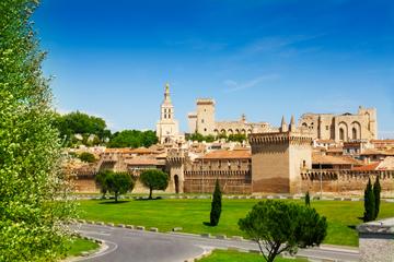 Excursão terrestre por Marselha: Excursão privada a Avignon