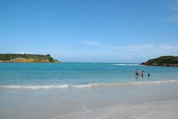 Cabo Rojo and Bioluminescent Bay Tour from San Juan