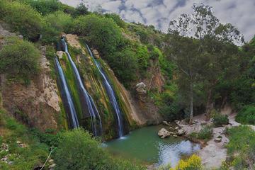 KEDEM Premium Off-Road North Golan...