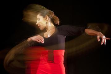 Flamenco Workshop in Nerja