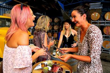 Full-Day Private Adelaide Hills Wine Exploration Tour from Adelaide or Glenelg