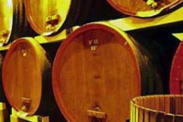 Excursion d'une journée de dégustation de vins en Provence en petit...
