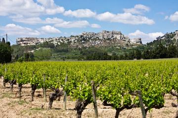 Tour des Baux-de-Provence au départ d'Avignon: vin et d'huile...