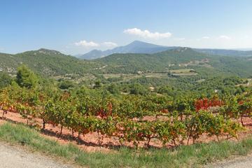 Tour des vignobles de la vallée du Rhône au départ d'Avignon