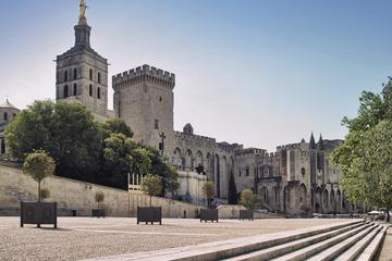 Visite à pied d'Avignon avec billet coupe-file pour le palais des...