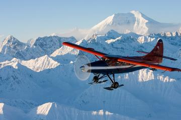Day Trip Grand Denali Flightseeing tour from Talkeetna near Talkeetna, Alaska