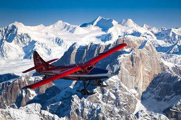 Day Trip Mountain Voyager Flightseeing tour from Talkeetna near Talkeetna, Alaska