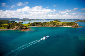 Bay of Islands Transfer Pass from