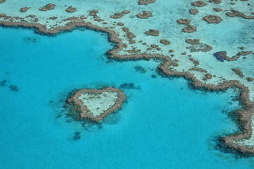 Reef and Island Scenic Flight from...