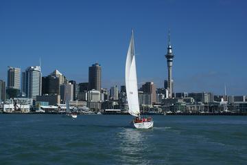 Segelbootstour im Hafen von Auckland