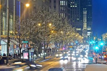 chicago holiday lights tour
