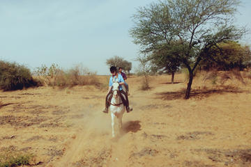 Private Equestrian Safari Day Trip from Jaipur