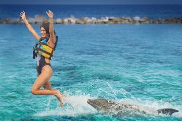 Dolphin Cove Adventures from Ocho Rios