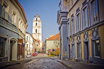 Visite privée du Vilnius juif