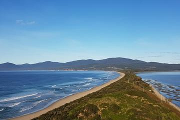 Small-Group Day Trip from Hobart to Bruny Island
