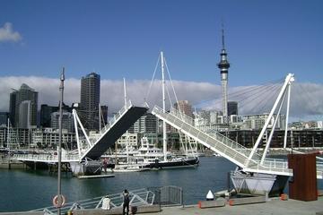 Excursão terrestre por Auckland: City Tour em Auckland, para grupos...