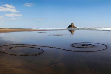 Öko-Tour: Küste und Wanderung durch den Regenwald ab Auckland