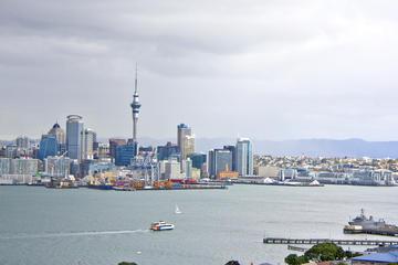 Tour des principales attractions d'Auckland avec écotour dans la...