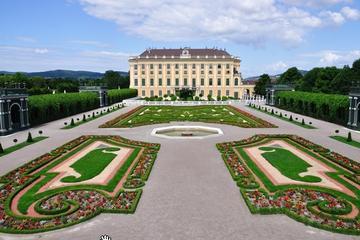 優先入場: ガイドツアー シェーンブルン宮殿と…