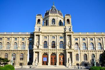Excursão em ônibus panorâmico pela cidade de Viena
