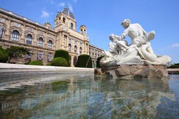 Sightseeingtur i Wien med båttur på...