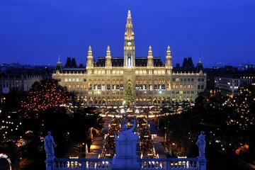 Vienna di notte: tour serale della città tra cui ruota panoramica