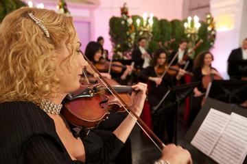 Visita al Palacio de Schönbrunn y concierto
