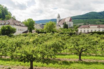 Wienskoven og Mayerling, halvdagstur