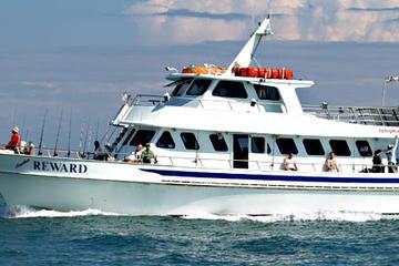 Crucero de pesca en Miami