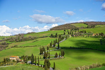 Montepulciano and Pienza Tuscany Full Day Tour from Rome