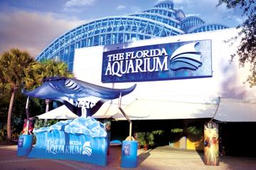 visite-aquarium-floride-baie-tampa