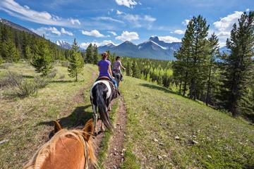 Full-Day Horseback Trail Ride and Lunch in Kananaskis