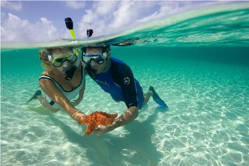 Full-Day Snorkeling Cruise from Hurghada