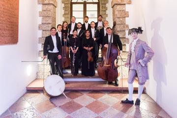 Concierto de la orquesta de cámara en la residencia de Mozart en...