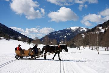 Trenó de Natal puxado a cavalo de Salzburgo