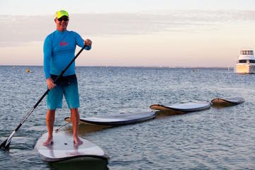 Rockingham Stand Up Paddle Board...