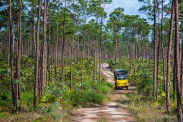 Bahamian Outdoor Adventure