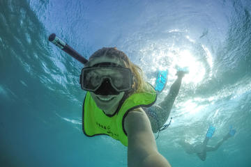 Freeport Shore Snorkel Tour