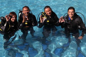 Open Water Diver Scuba Diving Course ...