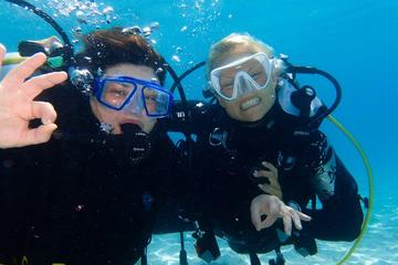 PADI-Anfänger-Programm: Pool- und Meertauchgang in Taurito