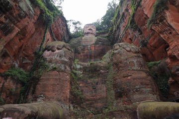 Private Day Trip: Chengdu Research Base of Giant Panda Breeding and Leshan Grand Buddha