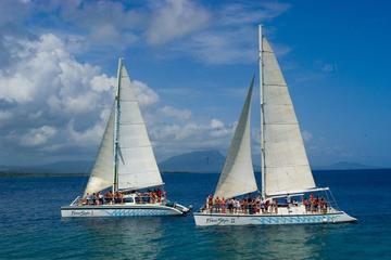 Sosua Bay Freestyle Catamaran Cruise from Puerto Plata