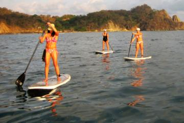 Nosara river stand up paddleboard (SUP) magrove and environment watching tour in Guanacaste