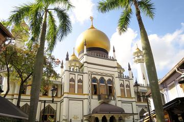 Uncover the Gems of Kampong Glam: The Seat of Malay Royalty in...